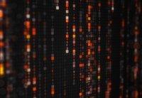 gonin - Adobe Stock