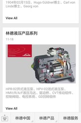 Screenshot Linde Hydraulics in China
