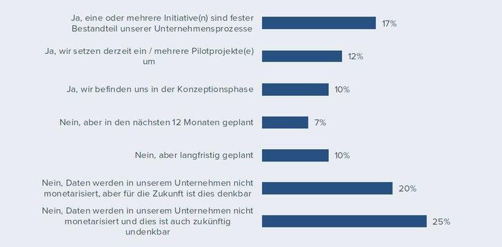 """Bild: """"Data Monetization – Use Cases, Umsetzung, Mehrwerte""""-Report"""