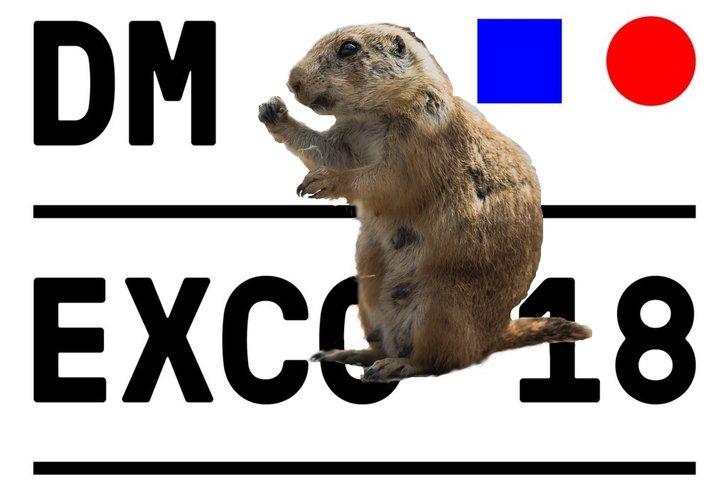 Murmeltier: Danny Wage on Unsplash, (CCO) // Logo: Dmexco, Barbetitung ADZINE